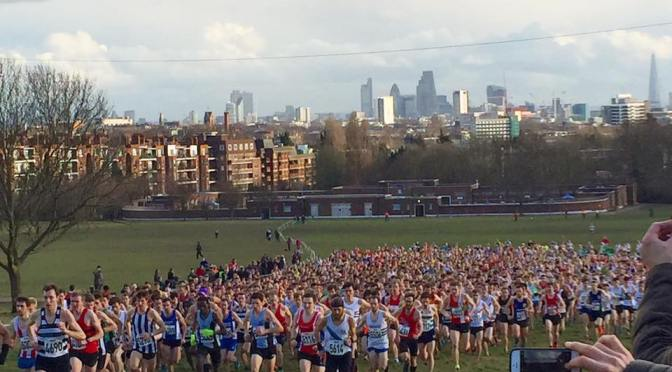 SEAA and Surrey Cross Country Championships