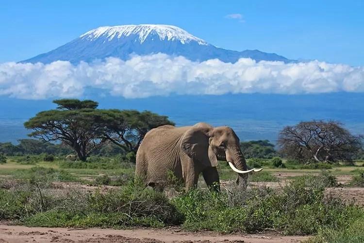 Afbeeldingsresultaat voor tanzania