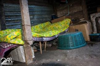 Ingrids Schlafplatz in der Küche mit ihrem Kücken