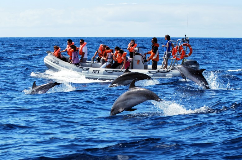 Portugal: Azores Islands Adventure