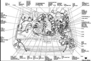 1994 Ford Explorer 40 Engine Diagram  Wiring Diagram