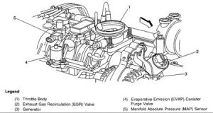 Engine Code P0446 Engine Code P0430 Wiring Diagram ~ Odicis