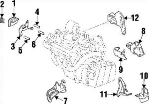 Buick Park Avenue Serpentine Belt Routing Pictures