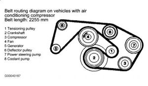 1990 Mercedes Benz 300ce Fan Belt Diagrahm: I Was