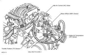 95 Buick Regal Engine Diagram 95 Free Printable Wiring