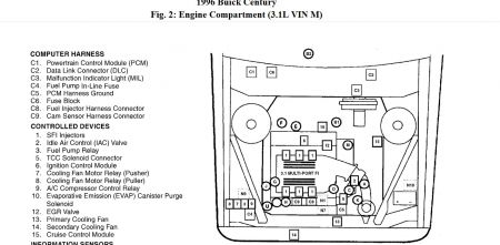 Buick Lesabre Fuse Box together with 94 Buick Park Fuel Pump Relay Location additionally Wiring Diagram 2003 Buick Park Avenue likewise 87 Buick Regal Fuse Box furthermore Fuel Pump Relay Location 1992 Buick Park Ave. on 88 buick century fuel pump relay location