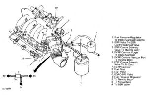 1995 Other Nissan Models Vacuum Hose Routing: Need a Vacuum Hose