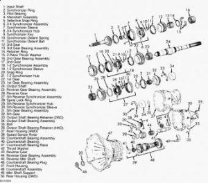 Dodge Nv3500 Transmission Dodge Wiring Diagram Images
