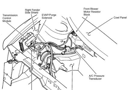 Diagram 1996 Acura Integra Fuse Box Diagram Free Download Wiring
