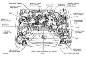 2002 Ford Ranger 3 0 Engine Diagram 2002 Free Printable