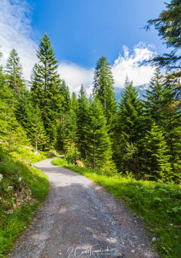 Wanderweg am Crestasee