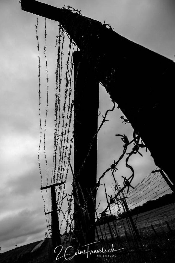 Stachdrahtzaun am Eisernen Vorhang