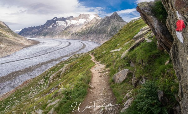 Wanderweg am Aletsch