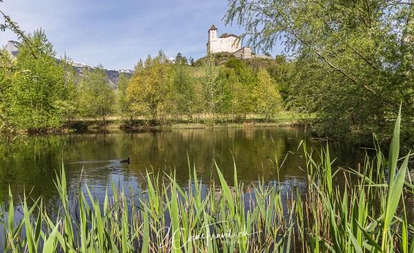 Teich Balzers