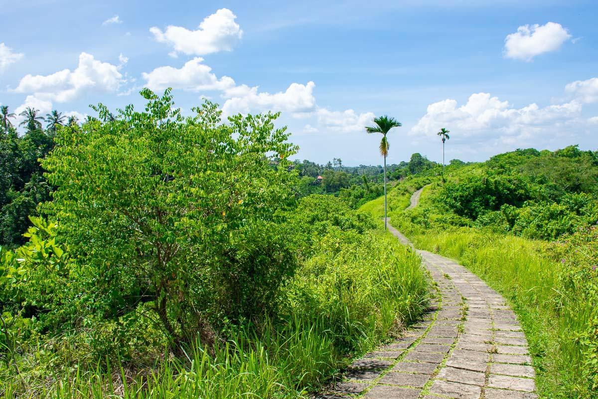 Nona settimana di viaggio : Ubud, sentirsi a casa