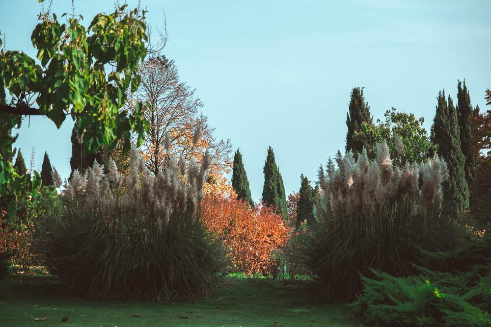 Un giorno al Parco Giardino Sigurtà