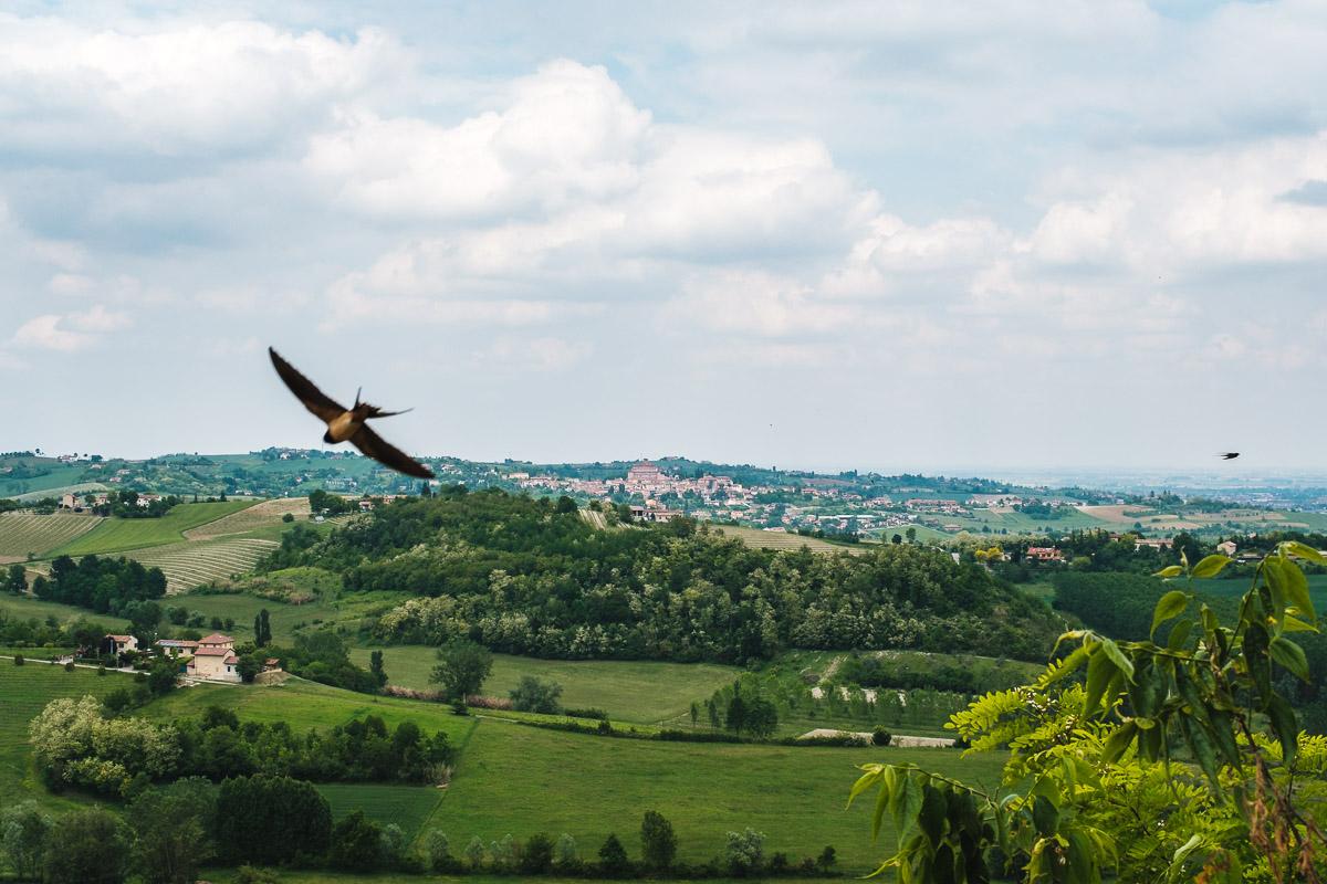 Weekend nel Monferrato: cosa vedere