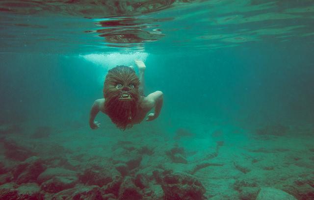 Photographie : Dans le quotidien d'un Wookiee
