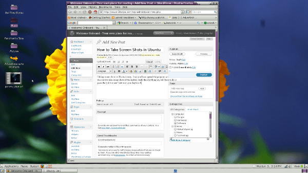 Screen Shot in Ubuntu with Background Included