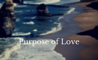Purpose of Love