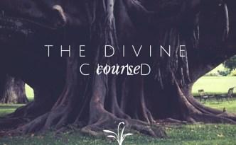 The Divine Child