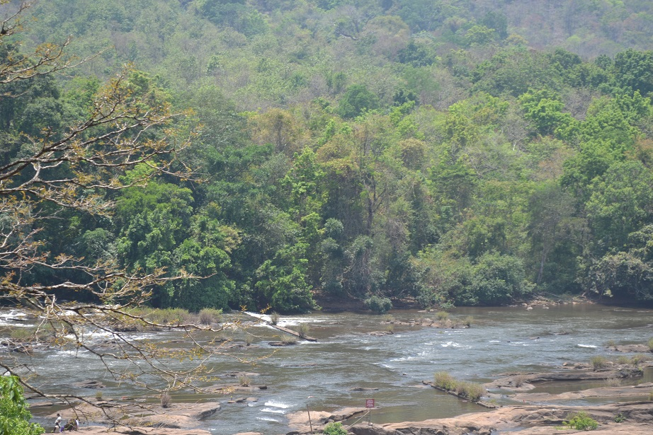 Chalkudy River