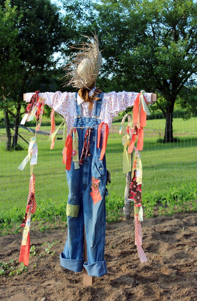 scarecrow 024