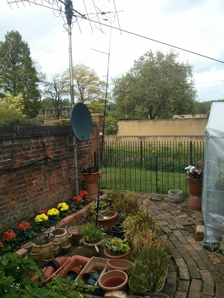 Image of my 10m GP in the garden