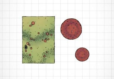 Druid's Burrow (5)