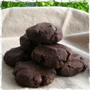 A stack of chocolate spice cookies