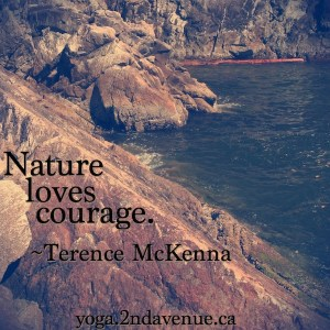 Quote: Nature loves courage