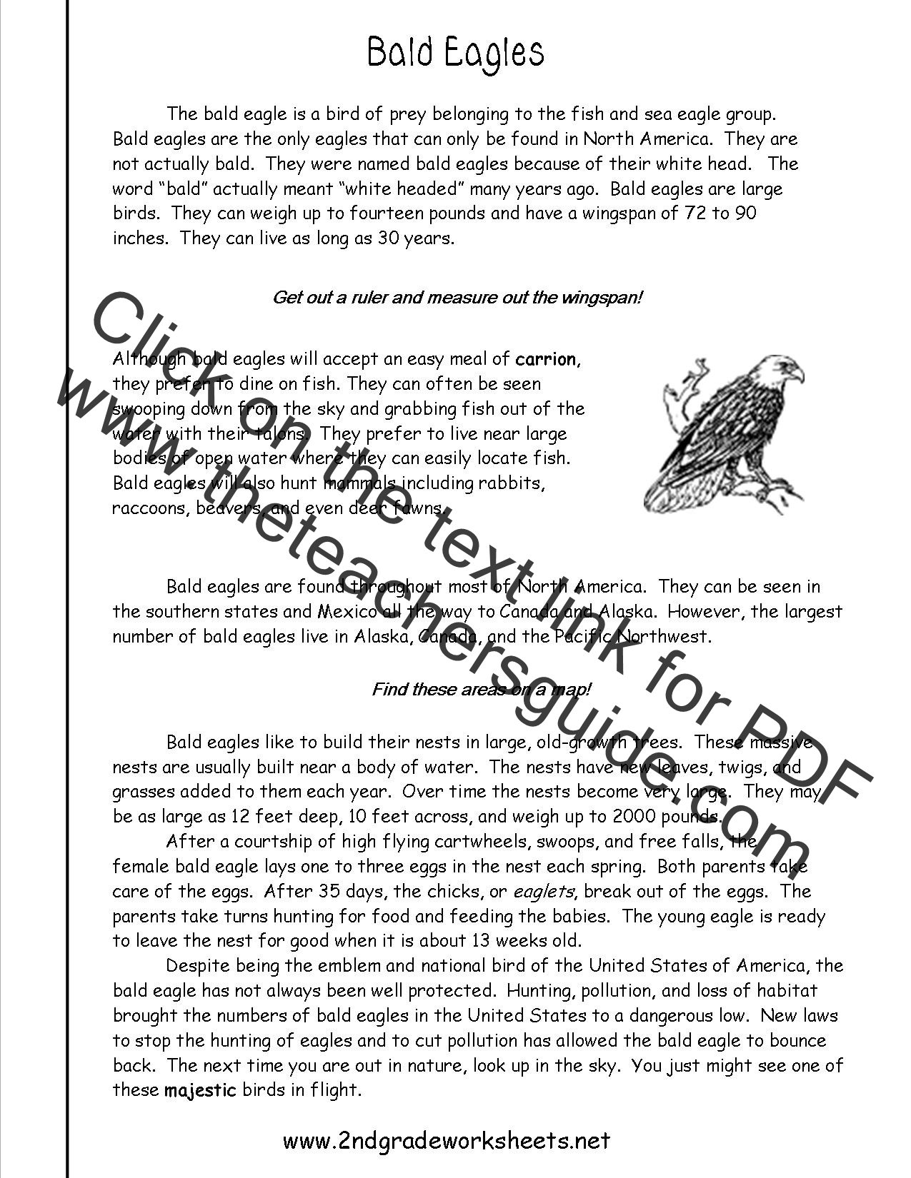Worksheets Reading Informational Text Worksheets