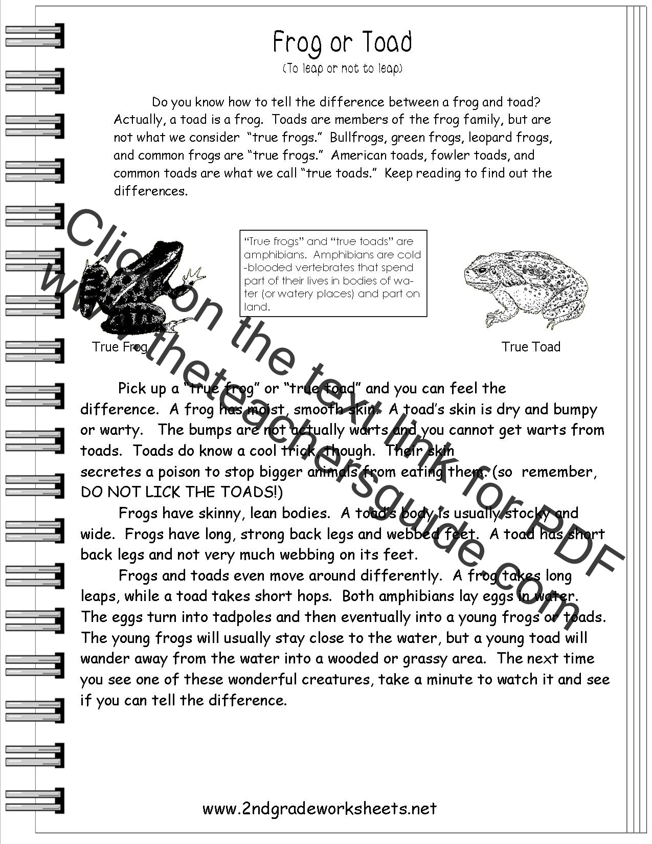Reading Informational Text Worksheets