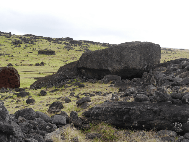 Da liegt er, der letzte Moai