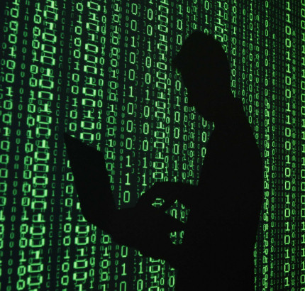 Otte danskere anholdt i international hacker-sag