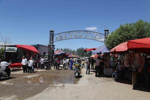 Kashgar Animal Livestock Market