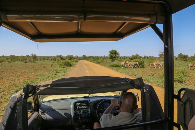 Driving in a jeep in Kruger National Park