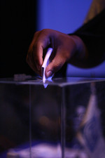 Voting in Zimbabwe's referendum set to take place this month but who is eligible to vote?