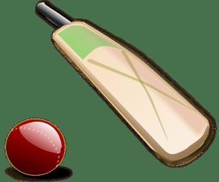 cricket-150560_640