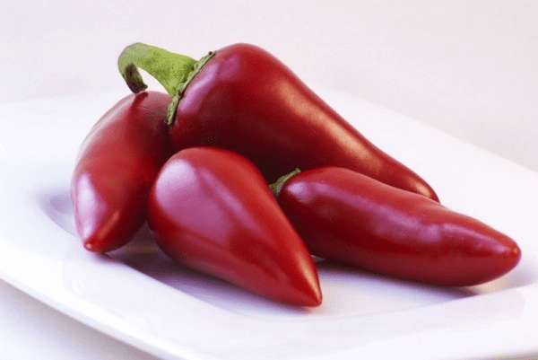 [red hot chilli peppers]