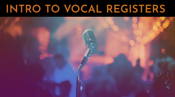 vocal registers intro to vocal registers 30 day singer