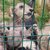 Les chiens ont été secourus dans un très mauvais état. © Fondation 30 Millions d'Amis