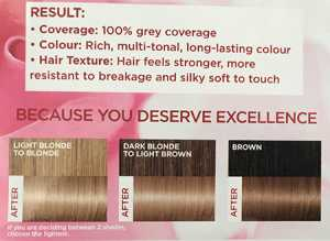 L'Oreal Excellence Creme in 8.1 Natural Ash Blonde - Possible results indication chart