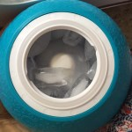 YayLabs SoftShell Ice Cream Ball ~ Making Stonyfield Frozen Yogurt!