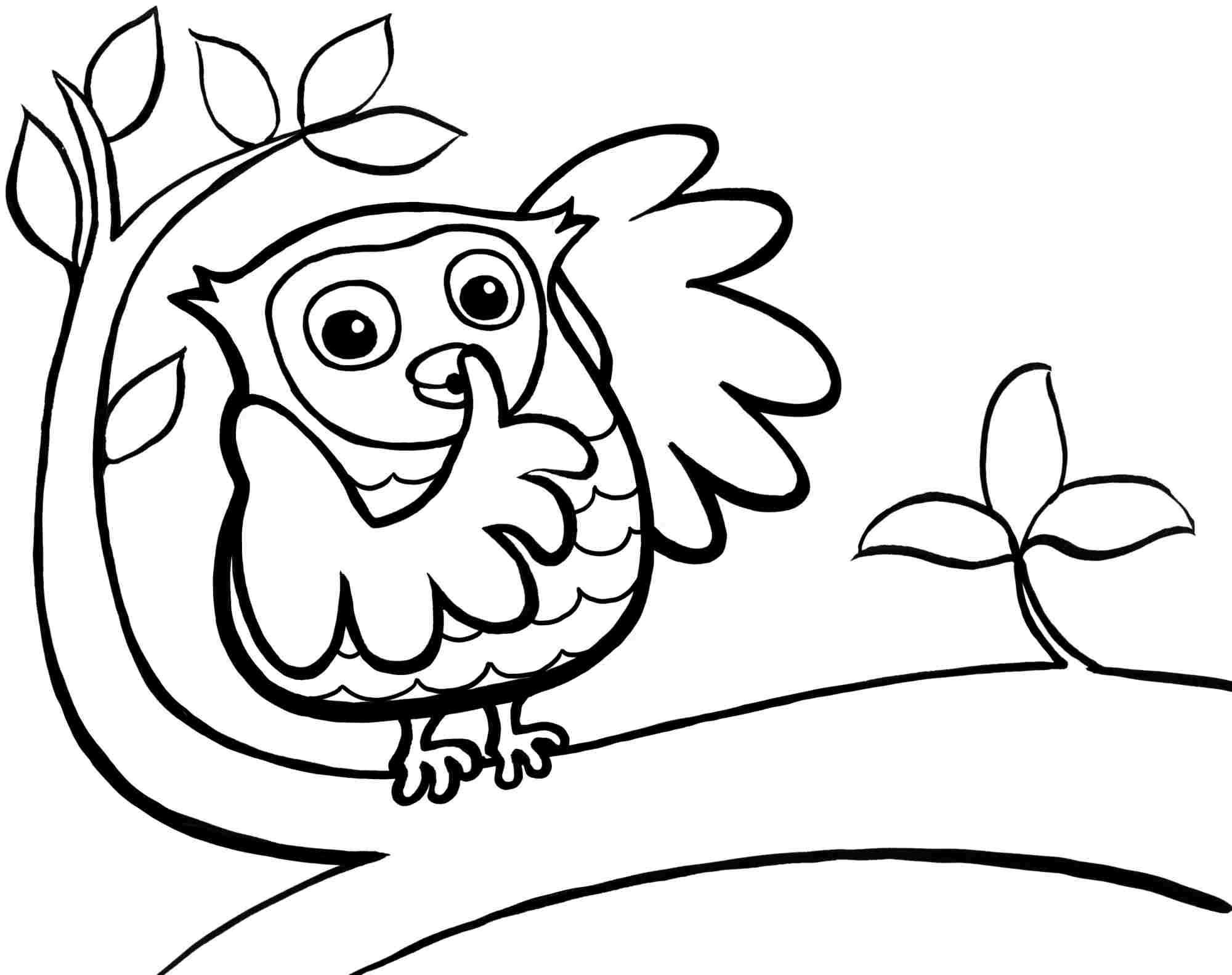 Cute Printable Owl Coloring Pages for Kids   360ColoringPages   free coloring pages for toddlers