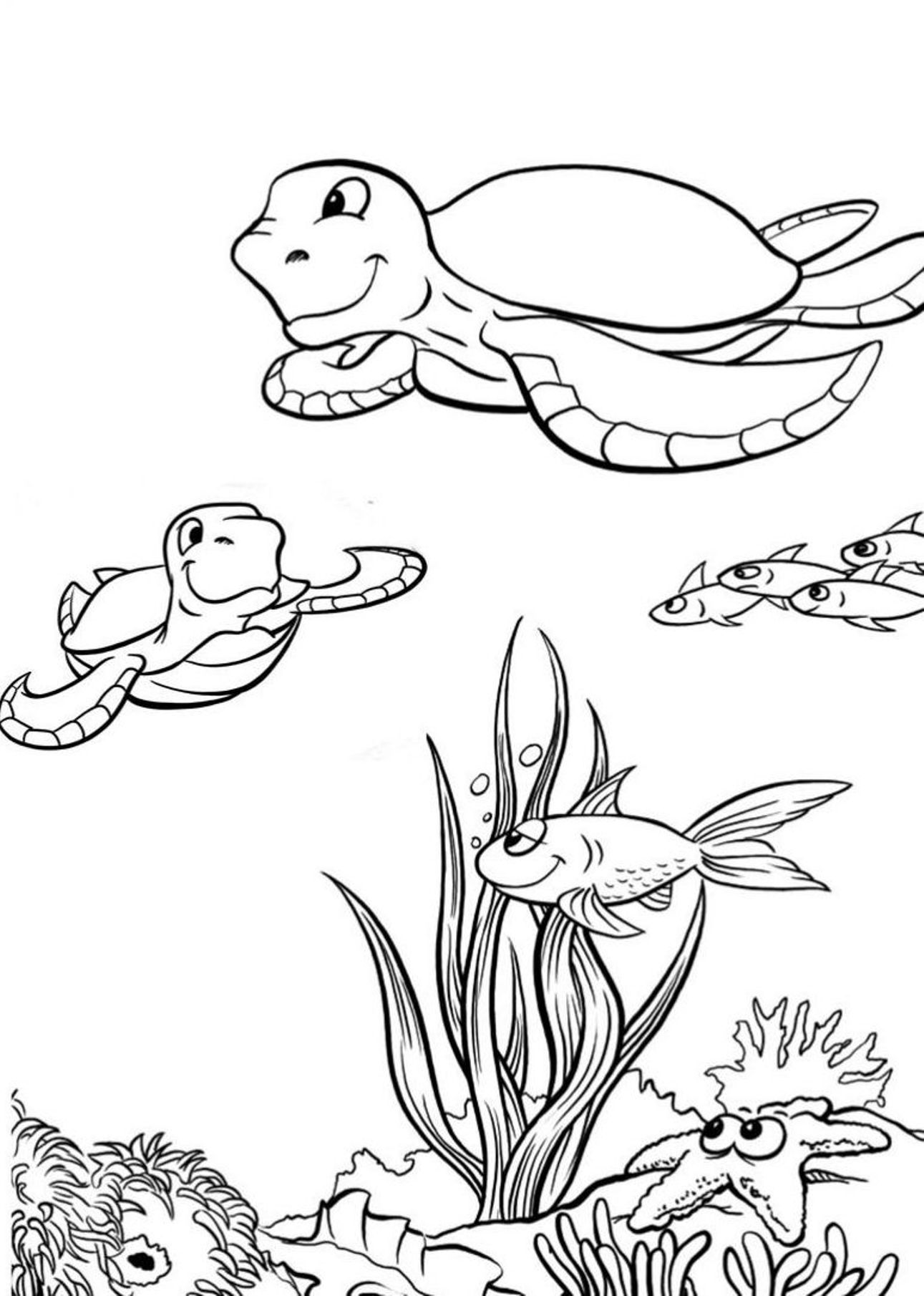 Print Out Water Turtle
