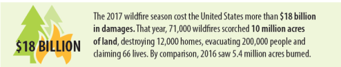 US Wildfire Stats