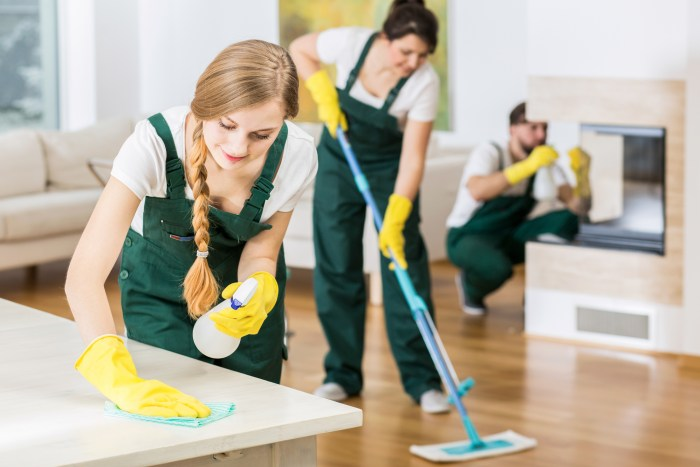 Rental cleaning service
