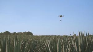 3045798-inline-p-1-patron-drone