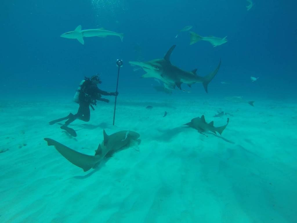 Underwater VR